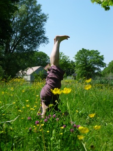 Yvonne Coppens Yoga op de dijk